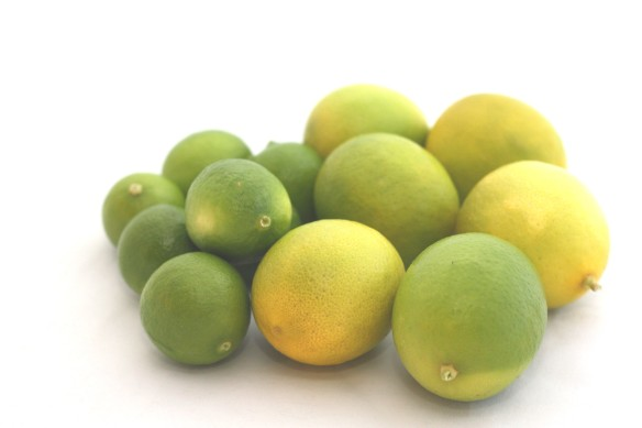 key and bearss limes